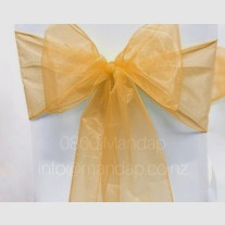 GOLD ORGANZA BOW
